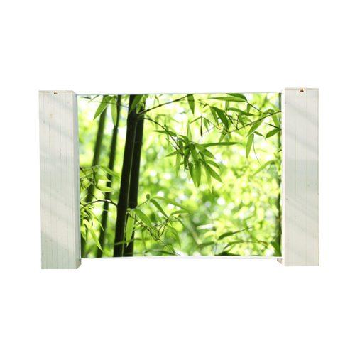 Bamboeplant bamboe cm diameter cm with bamboeplant free for Bamboe plant